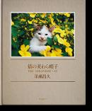 猫の麦わら帽子 深瀬昌久 写真集 THE STRAWHAT CAT Masahisa Fukase