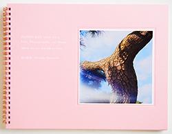 写真少年 1988-2011 生活と写真、そしてHome 谷口昌良 PHOTO-BOY 1988-2011 Life, Photography, and Home Taniguchi Akiyoshi