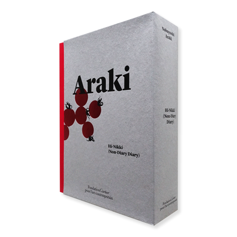 Hi-Nikki (Non-Diary Diary) by Nobuyoshi Araki 荒木経惟 写真集