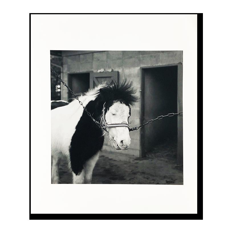 Hiroh Kikai: original print 「Ueno, Taito-ku」1980<br>鬼海弘雄 オリジナルプリント 台東区上野 東京夢譚 1980年