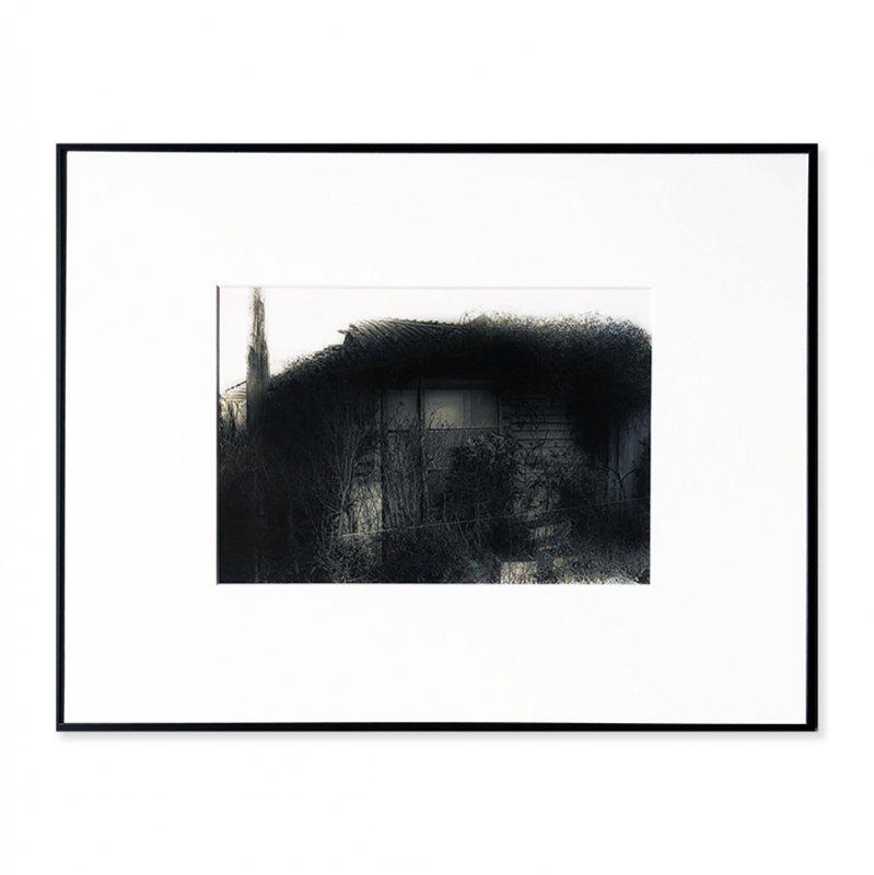 Daido Moriyama: Vintage print 「Memories of a Dog, 12」1983<br>森山大道 ヴィンテージプリント 犬の記憶 1983年
