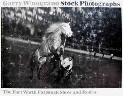 Stock Photographs GARRY WINOGRAND ゲイリー・ウィノグランド写真集