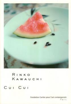 CUI CUI Rinko Kawauchi キュイ キュイ 川内倫子 写真集