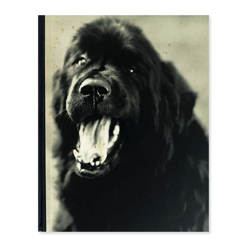 GENTLE GIANTS A BOOK OF NEWFOUNDLANDS by Bruce Weber<br>ブルース・ウェーバー