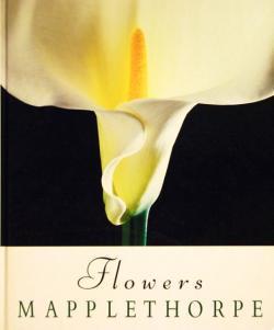 FLOWERS MAPPLETHORPE ロバート・メイプルソープ写真集 パティ・スミス=文