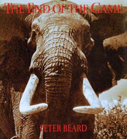 THE END OF THE GAME Us Edition PETER BEARD ピーター・ビアード 写真集