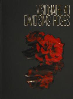 VISIONAIRE No.40 DAVID SIMS ROSES ヴィジョネア 40号 デヴィッド・シムズ 新品未開封 unopened