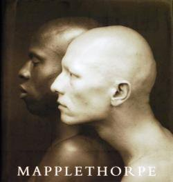 MAPPLETHORPE ロバート・メイプルソープ Robert Mapplethorpe Arthur C.Danto