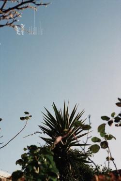 STAY ALONE #2 Yukihito Kono x Ren Hang 河野幸人×任航