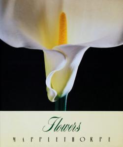 メイプルソープの花 ソフトカバー版 FLOWERS ROBERT MAPPLETHORPE