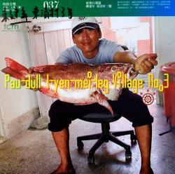 陳建年:東清村3号 Pau-dull:I-yen-mei-leg Village No.3 角頭音楽 037