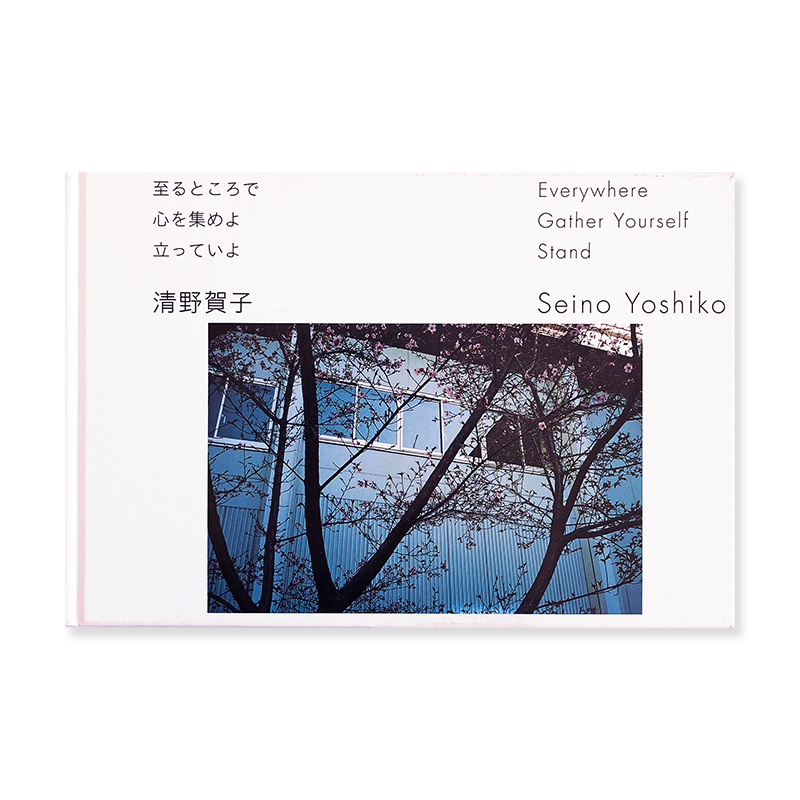 Everywhere Gather Yourself Stand by SEINO YOSHIKO *unopened<br>至るところで心を集めよ立っていよ 清野賀子 *新品未開封