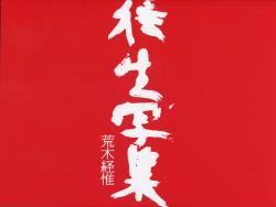 往生写集 東ノ空・PARADISE 荒木経惟 OJO SHASHU Araki Nobuyoshi 資生堂ギャラリー