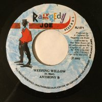 ANTHONY B / WEEPING WILLOW
