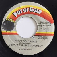 SPICY OF CHELSE MOVEMENT / POT OF GOLD REMIX