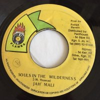 JAH MALI / SOULS IN THE WILDERNESS
