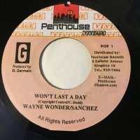 WAYNE WONDER & SANCHEZ / WON'T LAST A DAY