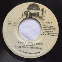 CARLTON LIVINGSTON / EVERY LITTLE THING