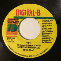 MORGAN HERITAGE & BUSH MAN / TRY - CHUKKI STAR / NUFF A DEM