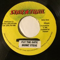 BIONIC STEVE / FLY THE GATE