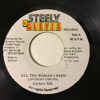 GARNETT SILK / ALL THE WOMAN I NEED