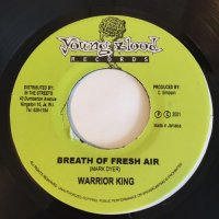 WARRIOR KING / BREATH THE FRESH AIR