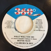 BEENIE MAN, CALIBE, BUCK DEE / WHAT WILL YOU DO