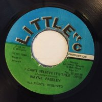 WAYNE PASSLEY / I CAN'T BELIEVE IT'S TRUE
