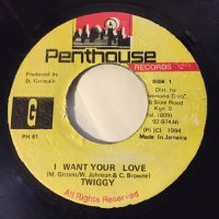 TWIGGY / I WANT YOUR LOVE