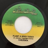 CHEZIDEK / PLANT A SEED TODAY