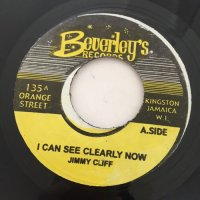 JIMMY CLIFF / I CAN SEE CLEARLY NOW
