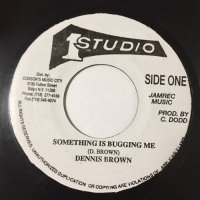 DENNIS BROWN / SOMETHING IS BUGGING ME