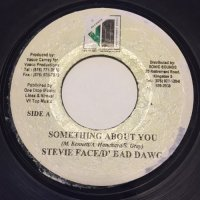 STEVIE FACE / SOMETHING ABOUT YOU