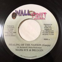 MARK ICE & DILLGIN / HEALING OF THE NATION (GANJA)