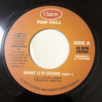 PAM HALL / WHAT U R DOING