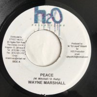 WAYNE MARSHALL / PEACE