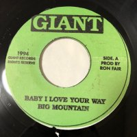 BIG MOUNTAIN / BABY I LOVE YOUR WAY - I WOULD FIND A WAY