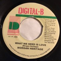 MORGAN HERITAGE / WHAT WE NEED IS LOVE