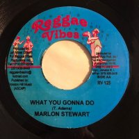 MARLON STEWART / WHAT YOU GONNA DO - CE'CILE / EASY COME