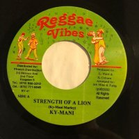 KYMANI MARLEY / STRENGTH OF A LION - NEW PROJECT / COME BABA