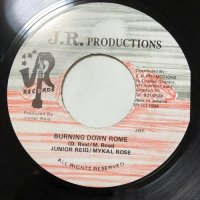 JUNIOR REID & MYKAL ROSE / BURNING DOWN ROME