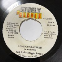 JACK RADICS & REGGIE STEPPER / LOVE GUARANTEED