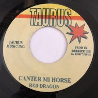 RED DRAGON / CANTER MI HORSE