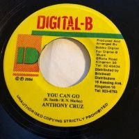ANTHONY CRUZ / YOU CAN GO