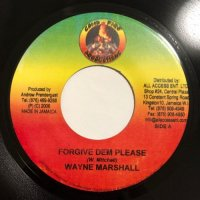 WAYNE MARSHALL / FORGIVE DEM PLEASE