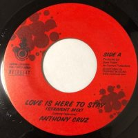 ANTHONY CRUZ / LOVE IS HERE TO STAY
