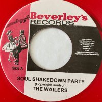 BOB MARLEY / SOUL SHAKEDOWN PARTY