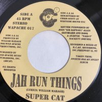 SUPER CAT / JAH RUN THINGS - THEM NO CARE