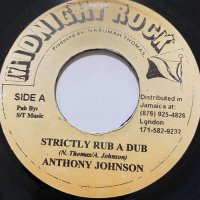 ANTHONY JOHNSON / STRICTLY RUB A DUB