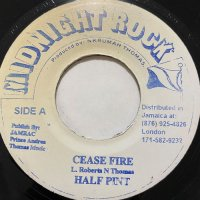 HALF PINT / CASE FIRE